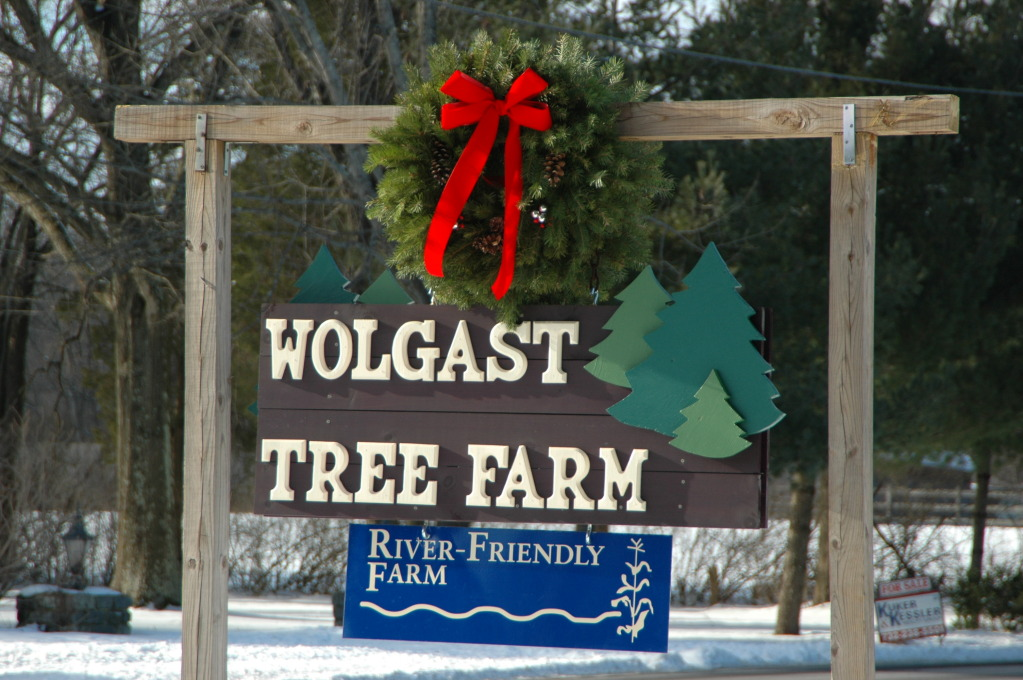 wolgast tree farm apiary at duke farms farm to table market - Bluebird Christmas Tree Farm